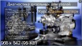 Дизель-мастер (2014) Видеокурс [2014, DVDRip, RUS]