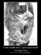 Демотиваторы '220V' 01.12.15