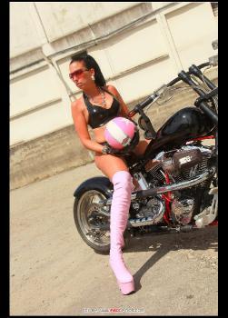 Pink Bitch RedOptics.com