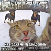 Фотоподборка '220V' 17.02.16