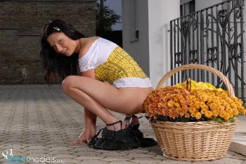 10-23-Angelina-BeeSting
