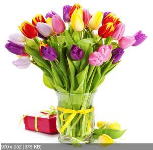 Поздравляем Наталью Ворон с Днем Рождения! - Страница 5 49937b88c2069fcb9c4546f2470ca1b2