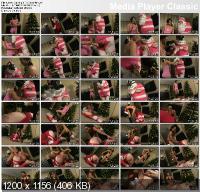 Sticking It To Saint Nick (2011/DVDRip)