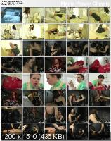 The Domina Files 25 - La Clinica - Paderborn, Germany (2009/DVDRip)